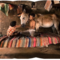 'Shape of Time' by Indian Panoramic Photographer Amit Pasricha at Under the Mango Tree Gallery on Berlin Art Grid