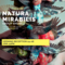 Natura Mirabilis at Luisa catucci gallery on Berlin Art Grid